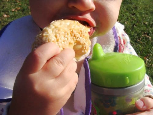 A baby chewing on a piece of a sesame coated Simit