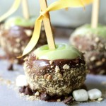 Apples and S'Mores | www.diethood.com
