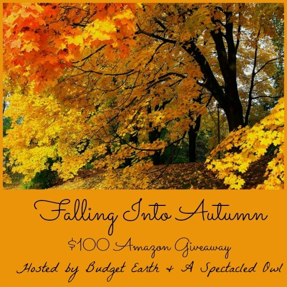 Falling into Autumn - $100.00 Amazon Gift Card Giveaway