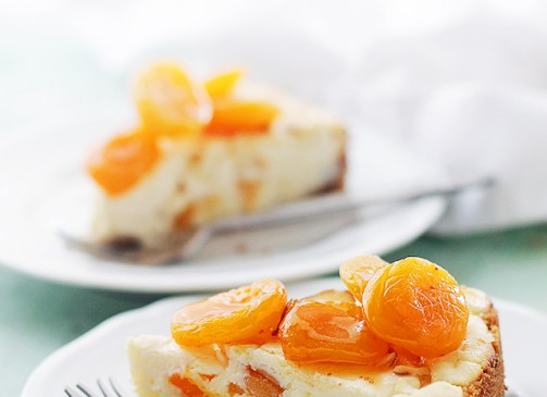 Apricot Ricotta Cheesecake | www.diethood.com |This light and fluffy Ricotta Cheesecake is sweetened with honey and packed with delicious chunks of apricots. | #recipe #cheesecake #nationalcheesecakeday