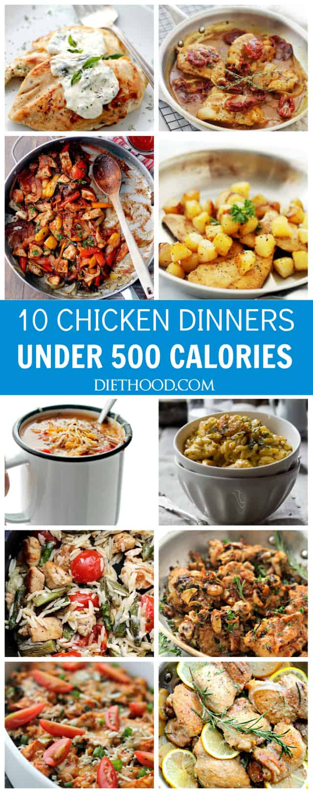 Ten chicken dinners under 500 calories diethood ten chicken dinners under 500 calories a compilation of my favorite chicken recipes with under forumfinder Image collections