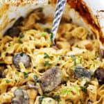 Crock Pot Chicken Stroganoff Recipe | Easy Chicken & Noodles Recipe