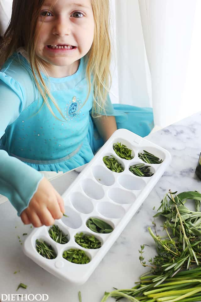 How to Freeze Fresh Herbs in Olive Oil - Freezing fresh herbs in olive oil is the perfect way to preserve herbs!