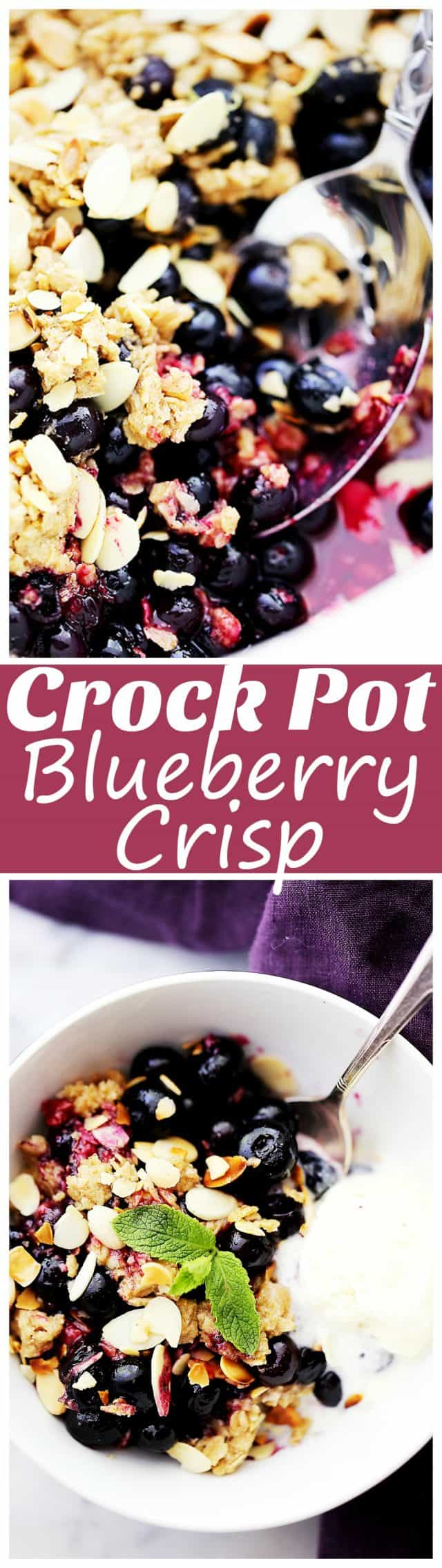 Crock Pot Blueberry Crisp - Packed with blueberries and oats, this simple, super delicious Blueberry Crisp is made right in the crock pot!