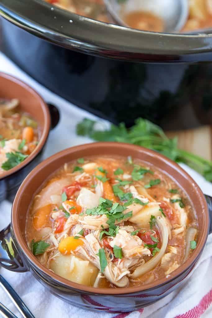 Slow Cooker Chicken Vegetable Stew in a bowl