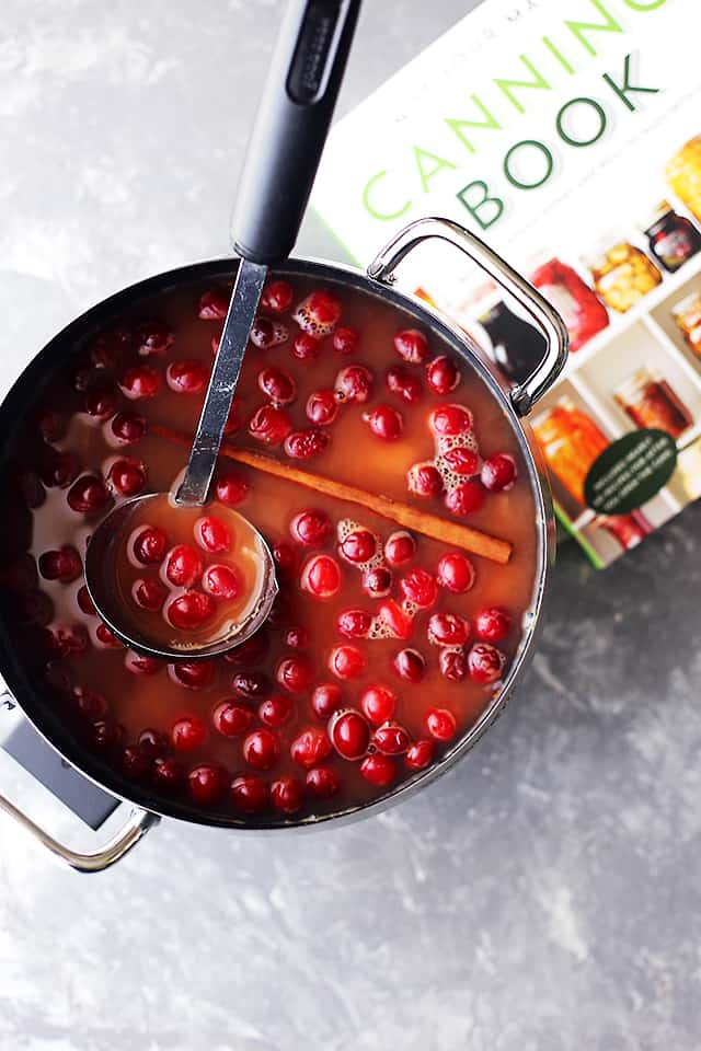 Cranberry Ketchup Recipe - Sweet and tangy homemade ketchup with delicious fall spices and cranberries! The combination of flavors here work so well together, you won't want to go back to store-bought ketchup ever again.