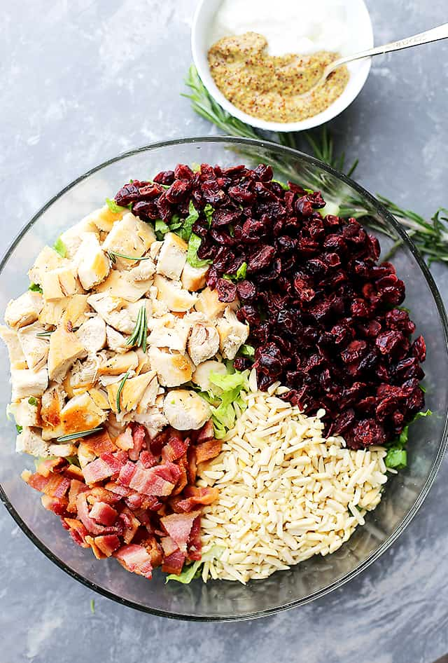 Cranberry Chicken Salad with Light Dijon Parmesan Dressing - Festive and delicious chicken salad packed with sweet cranberries, crunchy almonds, crispy bacon, and a creamy salad dressing that is lightened up, yet SO flavorful!