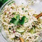 Cilantro Vinaigrette Coleslaw - Deliciously crunchy cabbage slaw tossed with an awesome cilantro vinaigrette!