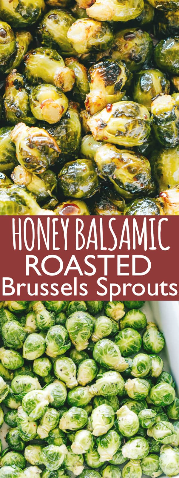 Oven Roasted Brussels Sprouts with Honey Balsamic Glaze - Roasted, crispy and delicious brussels sprouts coated with an amazing honey balsamic glaze!This easy to make Oven Roasted Brussels Sprouts Recipeis the perfect side dish that belongs on your Thanksgiving table.#holidays #thanksgivingrecipes #thanksgiving #thanksgivingsidedish #brusselssprouts #roastedvegetables #roastedbrusselssprouts #glutenfree #vegetarian #christmasrecipes #christmas #cheese