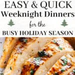 20 Easy & Quick Weeknight Dinner Ideas for the Busy Holiday Season!