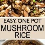 Mushroom Rice Pin