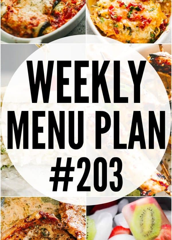 MENU PLAN 203 PIN IMAGE