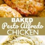 Baked Pesto Alfredo Chicken Pin Image