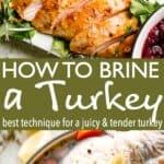 brined turkey pin image