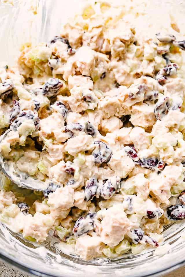 Turkey salad with cranberries and celery.
