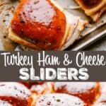 TURKEY SLIDERS PIN IMAGE