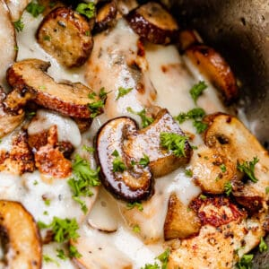 close up of chicken with cream sauce and mushrooms