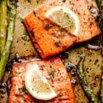 sockeye salmon pinterest image