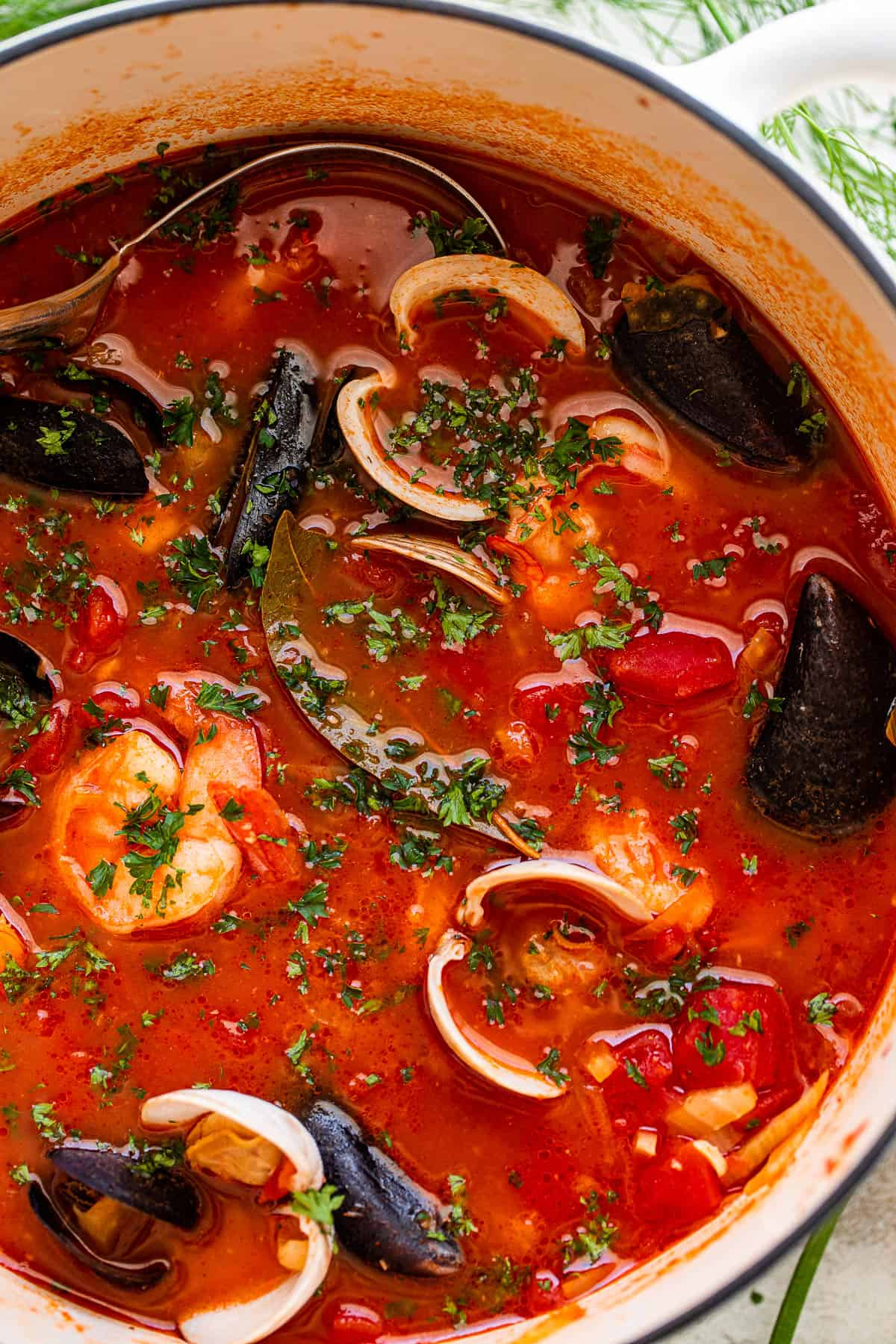 San Francisco Cioppino Recipe Easy Homemade Fish Stew