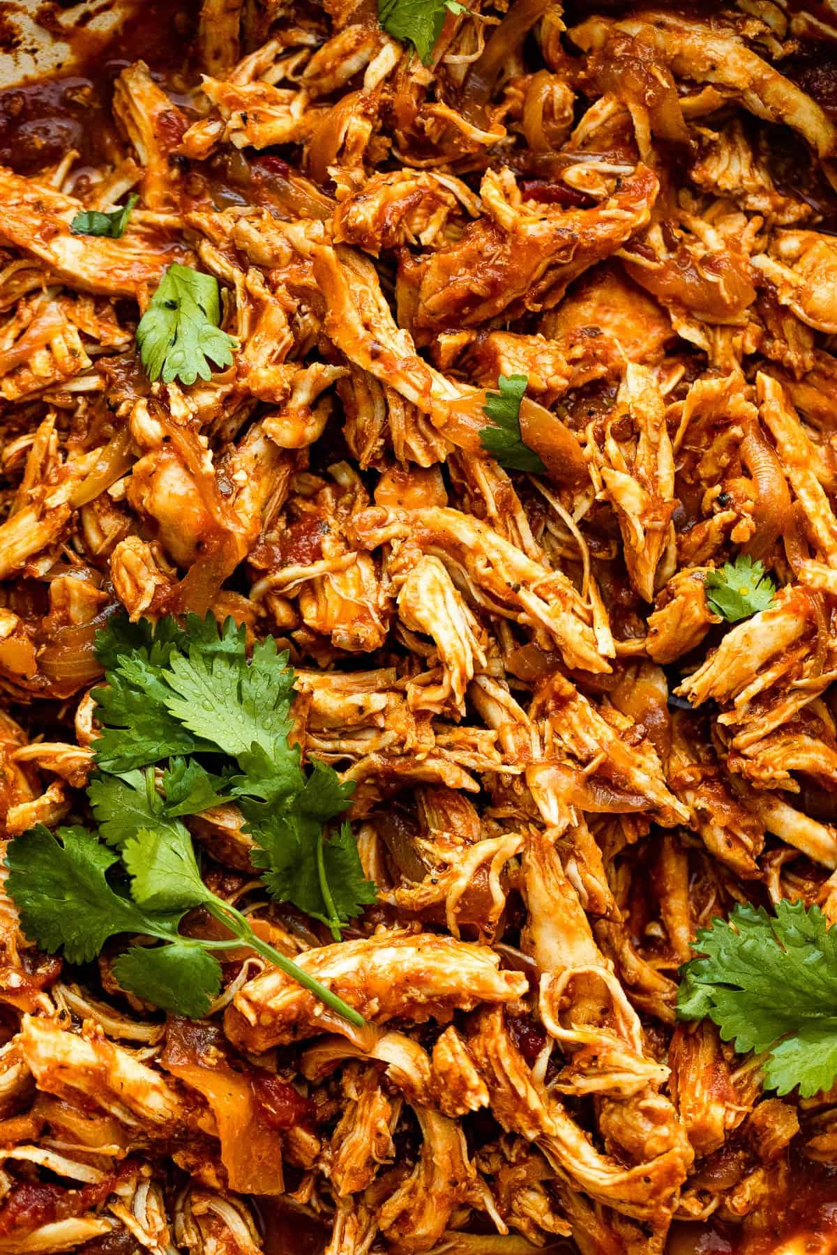 up close photo of shredded chicken for Mexican tinga