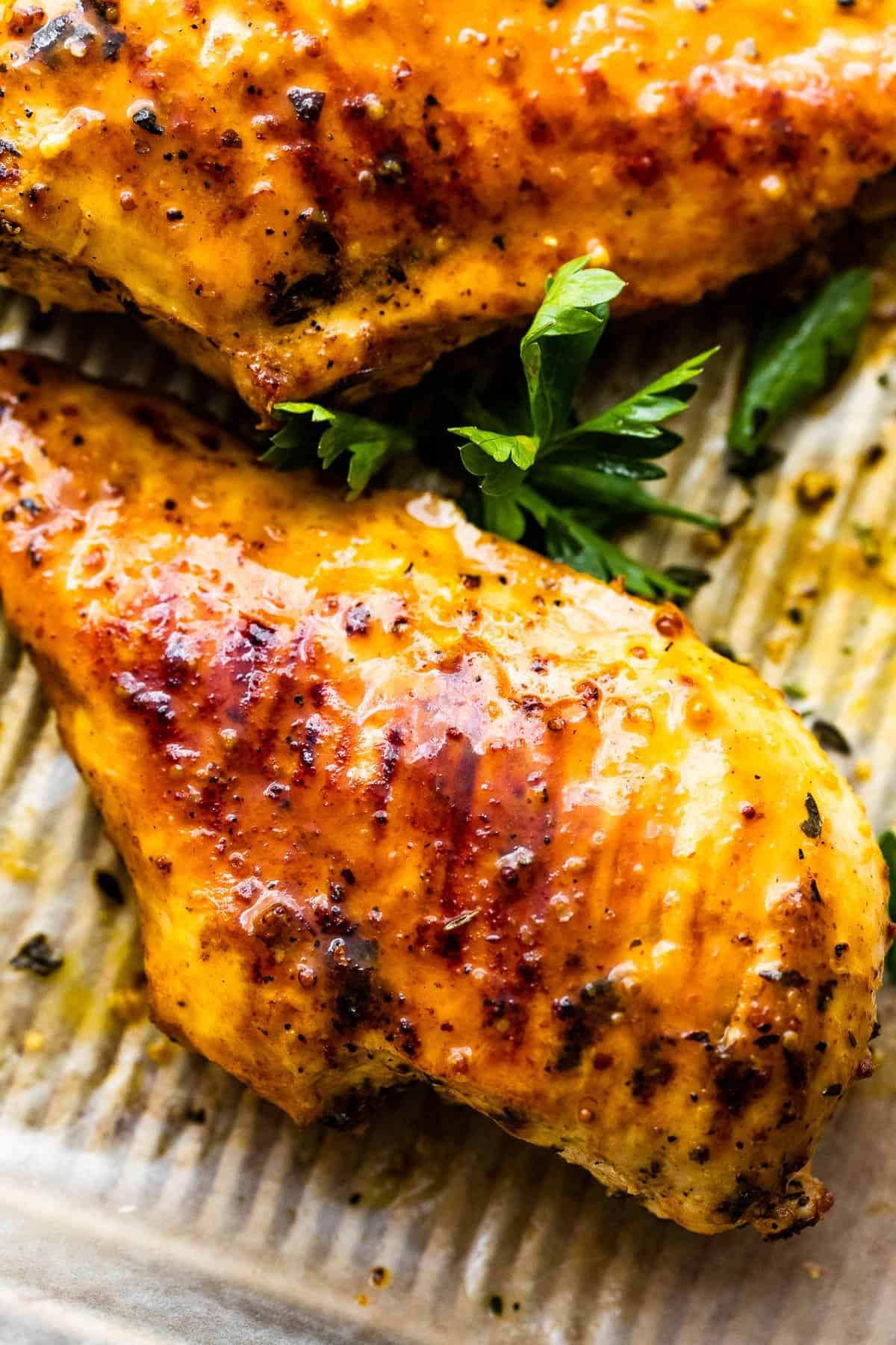 grilled honey mustard chicken breasts on a sheet pan