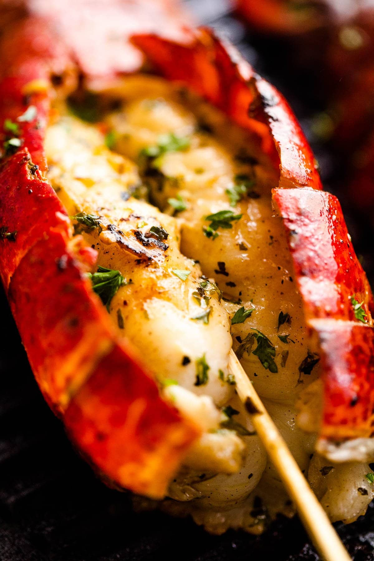 up close shot of a grilled lobster on the grill